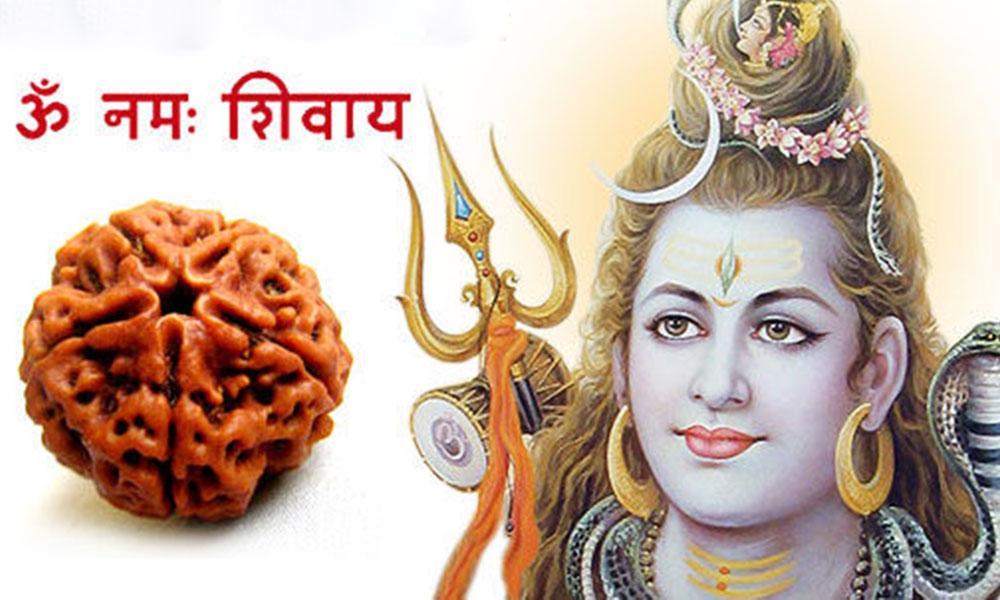 Panch Mukhi Rudraksha