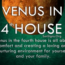 planet-venus-t in-house-4